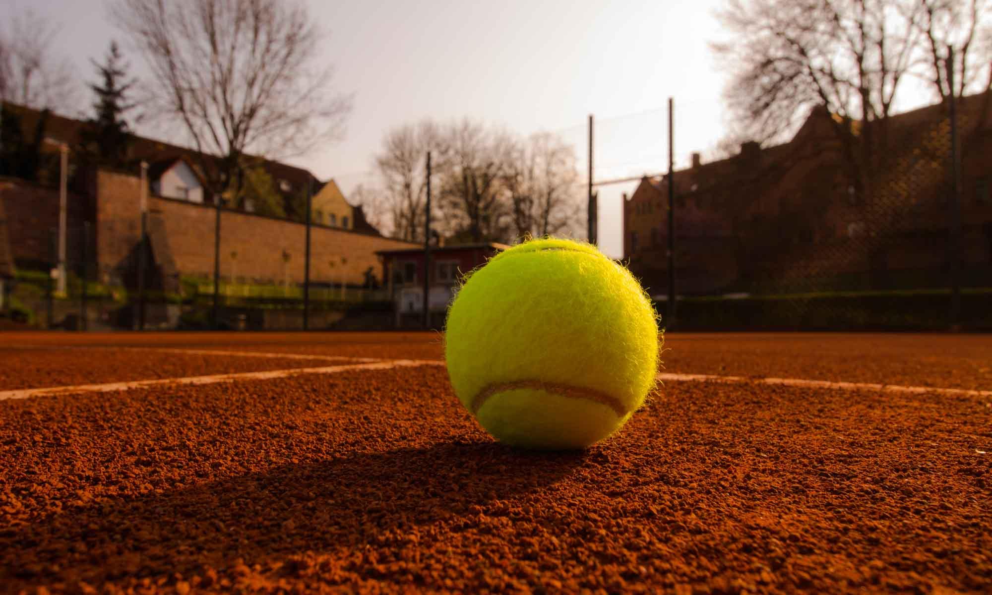Delitzscher Tennisclub 1921 e.V.